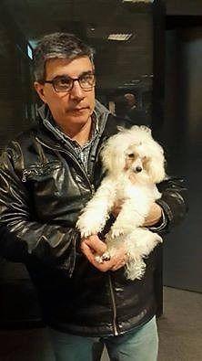 Estilista canino en Lomas de zamora, zona sur del Gran