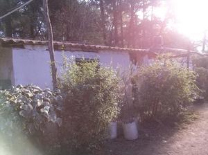 Casa de campo en marcos paz. Lote de 5 hectáreas