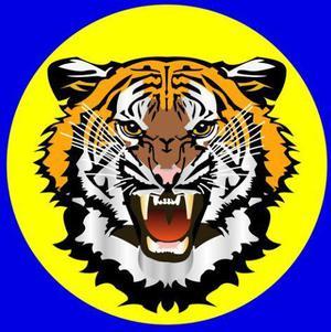 Servicio de jardinería, jardinero en tigre, jardinería a