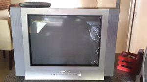 Tv Grunding 21 pantalla plana con control