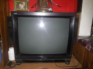 TELEVISION DE 29 PULGADAS