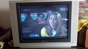 VENDO TV PANTALLA PLANA 29 BGH
