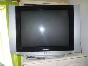 "Televisor SAMSUNG 29"" pantalla plana slim"