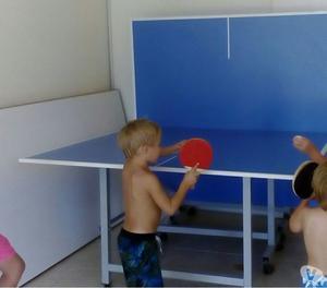 Vendo Mesa de ping pong y tejo electronico