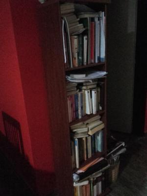 Biblioteca cuatro estantes