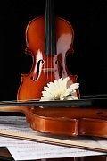 Clases de Violin Metodo Exclusivo y Unico V Devoto