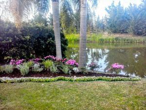 Diseño de parques y jardines