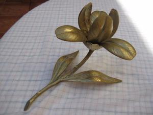 Flor para decorar.
