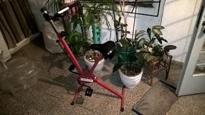 bicicleta fija marca RODIAL