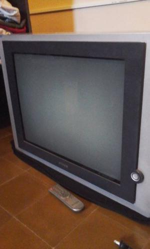 "TV marca RANSER, 29"" pantalla plana con control remoto."
