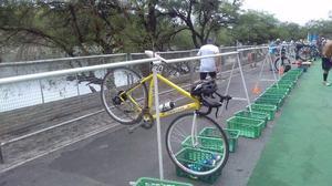 bici pantani rodado 28
