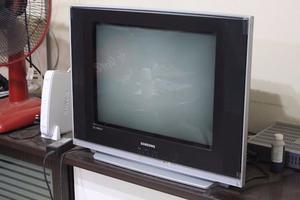 """Tv Samsung 21"""" Pantalla Plana"""