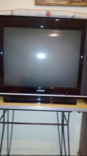 "Vendo, TV pantalla plana 29"""