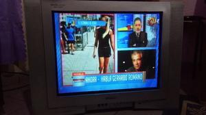 VENDO TV DE 21 PULG EUROLUX PANTALLA PLANA