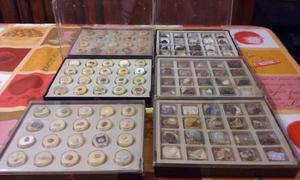 Colección Completa De Piedras Y Minerales...