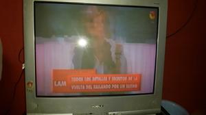 "Vendo tv 29 "" noblex control remoto"