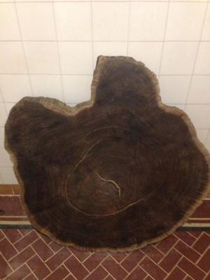 Vendo Rodaja de tronco grande