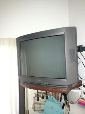 Vendo TV Sony 29 Pulgadas