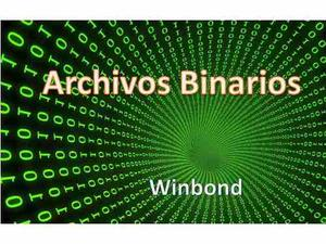 Archivos Binarios Programacion Todos Los Modelos Netbooks