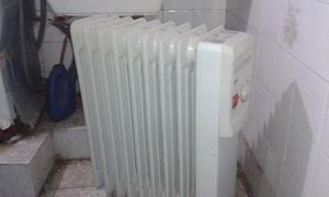 Radiador electrico (2) de 9 elementos EWT $  C/U