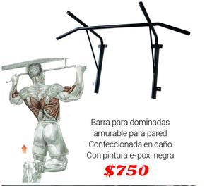 Barra para dominadas profesional con puños acolchonados