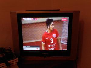 Televisor de 21 pulgadas pantalla plana