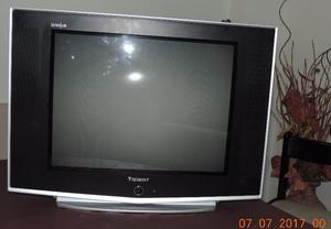 "EXCELENTE TV PANTALLA PLANA 21"" SLIM"