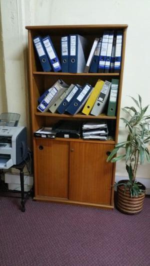 Biblioteca 2 Puertas Archivo Escritorio Oficina Usada