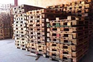 compra y venta de pallets de madera y bolsones bisg bags