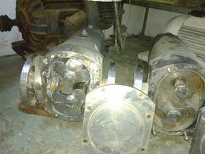 2 bombas lobulares de acero inoxidable de 3 pulgadas Alfa