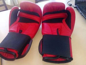 Guantes de boxeo traidos de alemania $800