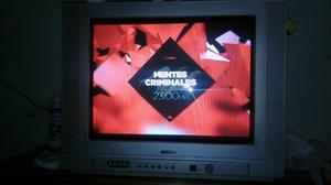 """TV pantalla plana 29"""""""