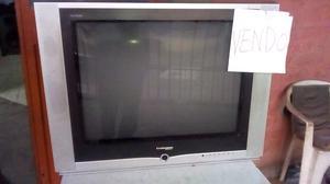 vendo tv 29 pulgadas pantalla plana control remoto