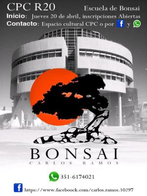 Bonsai Escuela Taller