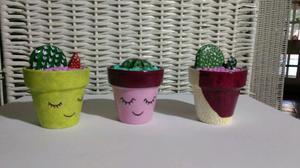 Macetas con cactus !