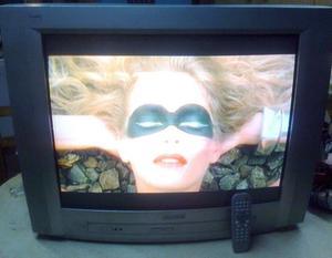 Tv Philips 29PT de 29 pulgadas [usados en La Plata]
