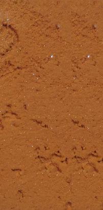 revestimiento plastico texturado tarquini revear vadex ancla