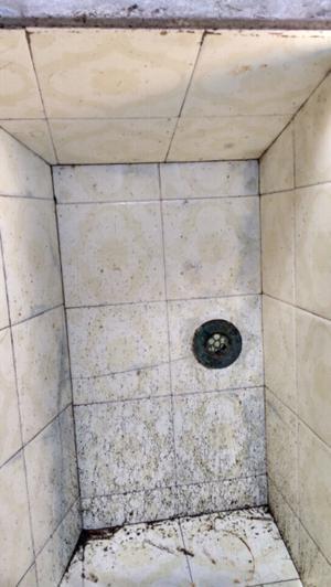 Pileta de lavadero o patio de cemento posot class for Piletas de concreto