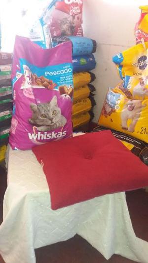 alimento gato promo