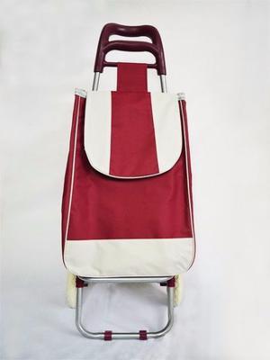 Chango de compras con bolsa de tela