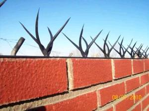 Pinches seguridad muros