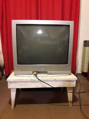 Vendo TV NOBLEX 29'. Con control remoto y cable audio/video.