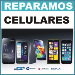 Servicio, Programación Y Reparación De Celulares Y Tablets