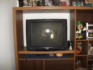 TV PHILIPS POWERVISION DE 29, CON CONTROL