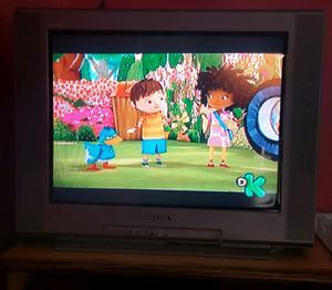 Tv Sony Trinitron Pantalla Plana
