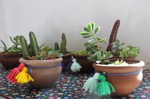Suculentas y cactus Pack 8 macetas de barro decoradas