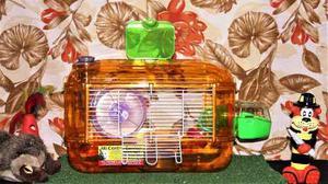 Hamstera Acrilico 30x28x48 + Envio Capital Federal