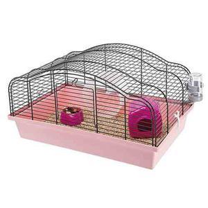 Hamstera Oriente - Envíos Cap Fed - Pet Shop Beto