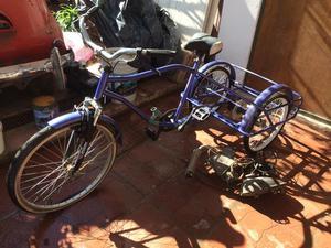 Bicicleta de 3 Ruedas con Motor