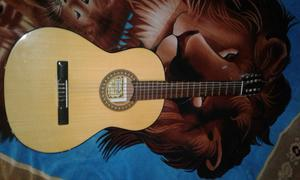 Vendo guitarra con funda